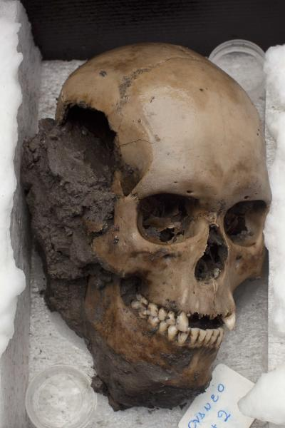 A skull recently discovered at the archaeological site Templo Mayor sits on display in Mexico City, Friday, Oct. 5, 2012. Mexican archaeologists say they have found the largest amount of skulls at the most sacred temple of the Aztec empire. Five of the 50 skulls that were found, including this scull, were buried under a sacrificial stone and have holes on both sides of the head, evidence they were hung on a skull rack. (AP Photo/Alexandre Meneghini)