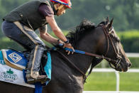 Belmont Stakes entrant Rock Your World takes a training run on the main track ahead of the 153rd running of the Belmont Stakes horse race, Wednesday, June 2, 2021, at Belmont Park in Elmont, N.Y. (AP Photo/John Minchillo)