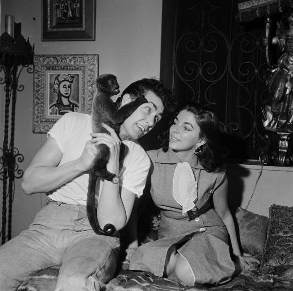 <p>In her fashionable townhouse in London's Mayfair, Joan Collins and her husband, Maxwell Reed, admire their pet monkey, Spider. </p>
