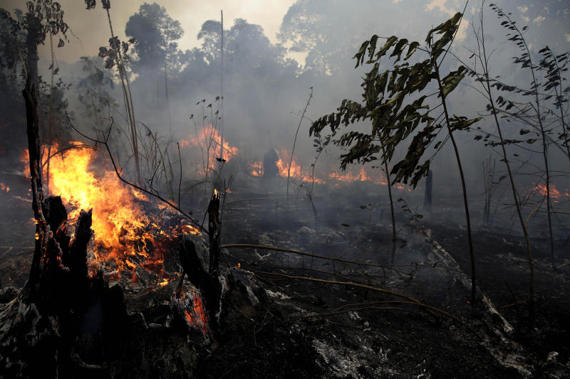 "A fire burns trees and brush along the road to Jacunda National Forest, near the city of Porto Velho in the Vila Nova Samuel region which is part of Brazil's Amazon, Monday, Aug. 26, 2019. The Group of Seven nations on Monday pledged tens of millions of dollars to help Amazon countries fight raging wildfires, even as Brazilian President Jair Bolsonaro accused rich countries of treating the region like a ""colony."" (AP Photo/Eraldo Peres)"