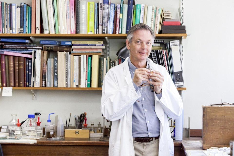 Dr Peter Gasson in the wood technologies lab (RBG Kew/Steve Lancefield)