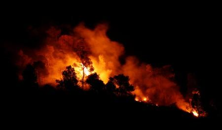 FILE PHOTO: Trees burn during a forest fire near Maials, west of Tarragona