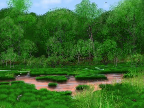 What America's Forests Looked Like Before Europeans Arrived