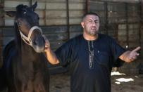 Palestinian man Omar Shahin, 40, gestures as he holds his horse that was wounded during the Israeli-Palestinian fighting, in Gaza