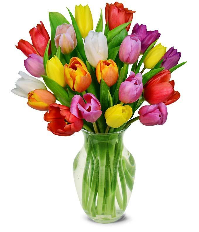 """<h2><a href=""""https://www.fromyouflowers.com/"""" rel=""""nofollow noopener"""" target=""""_blank"""" data-ylk=""""slk:From You Flowers"""" class=""""link rapid-noclick-resp"""">From You Flowers</a></h2><br><strong>Best For: Classic Bouquets</strong><br>Peruse all the Valentine's Day classics by <a href=""""https://www.fromyouflowers.com/occasion/valentines-day-flowers-gifts"""" rel=""""nofollow noopener"""" target=""""_blank"""" data-ylk=""""slk:From You Flowers"""" class=""""link rapid-noclick-resp"""">From You Flowers</a> — such as long-stemmed red roses, pink Asiatic lilies, white orchids, and purple roses.<br><br><strong>Deal:</strong> Enjoy a<strong> 20% off </strong>sitewide discount, which will be applied automatically at checkout. <br><br><strong>From You Flowers</strong> Rainbow Tulip Bouquet - 20 Stems, $, available at <a href=""""https://go.skimresources.com/?id=30283X879131&url=https%3A%2F%2Fwww.fromyouflowers.com%2Fproducts%2Ftip_top_tulip_bouquet_-_15_stems.htm"""" rel=""""nofollow noopener"""" target=""""_blank"""" data-ylk=""""slk:From You Flowers"""" class=""""link rapid-noclick-resp"""">From You Flowers</a>"""