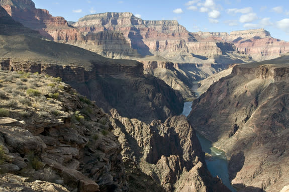 Grand Canyon's Age? A Mix As Wild As the West