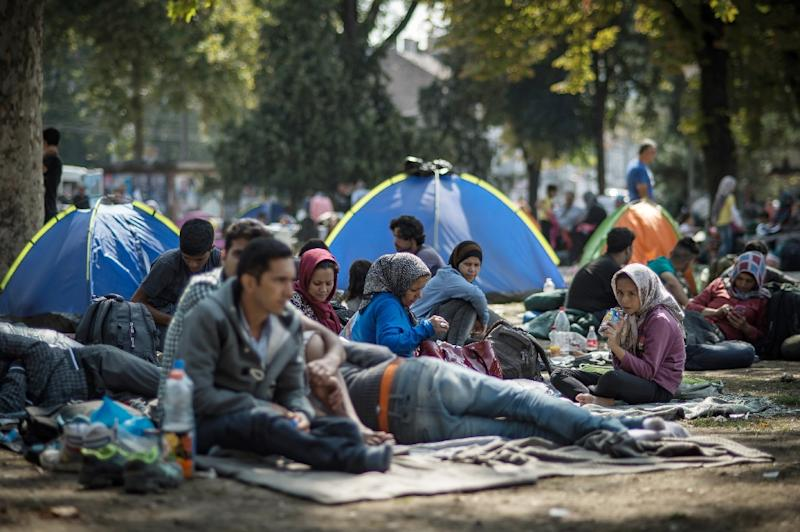 Hundreds of migrants rest in a park where they have found temporary shelter in the Serbian capital Belgrade on August 26, 2015 (AFP Photo/Andrej Isakovic)
