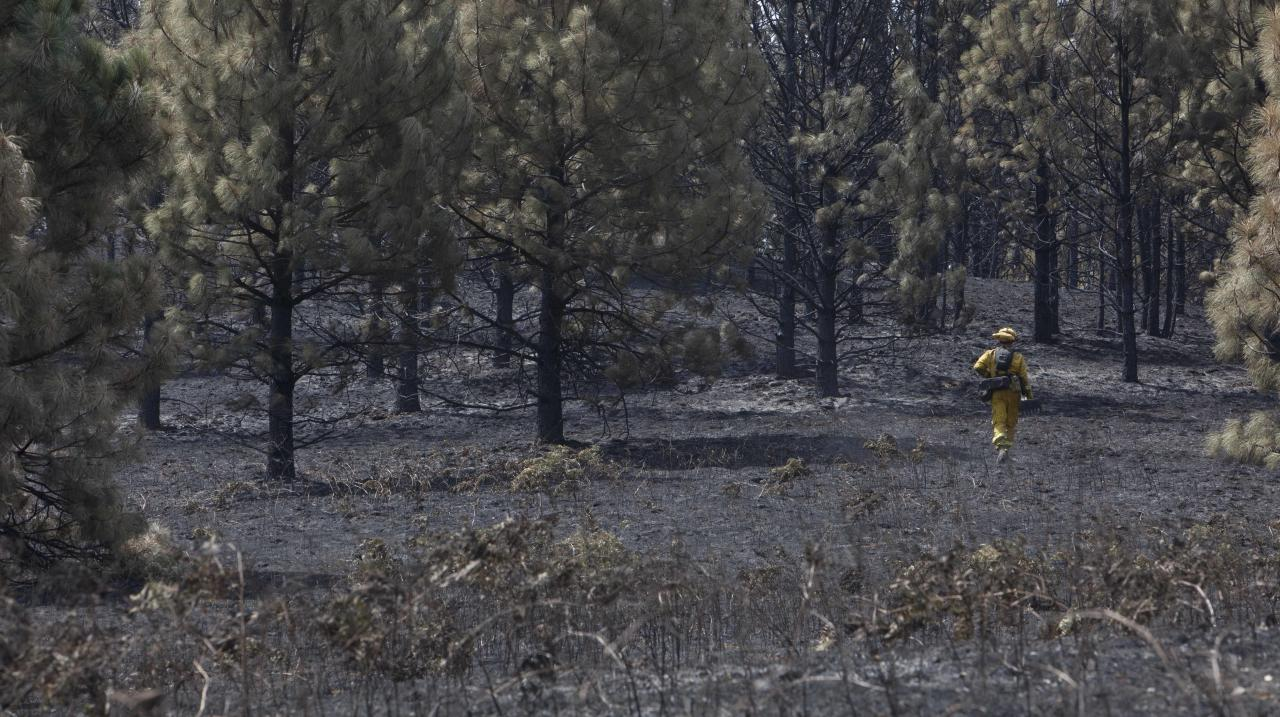A Cal Fire crew member looks for hot spots in ground burned by the of the Sand Fire in the rugged foothills of El Dorado county near Plymouth, Calif., on Monday, July 28, 2014, 2014. (AP Photo/Steve Yeater)