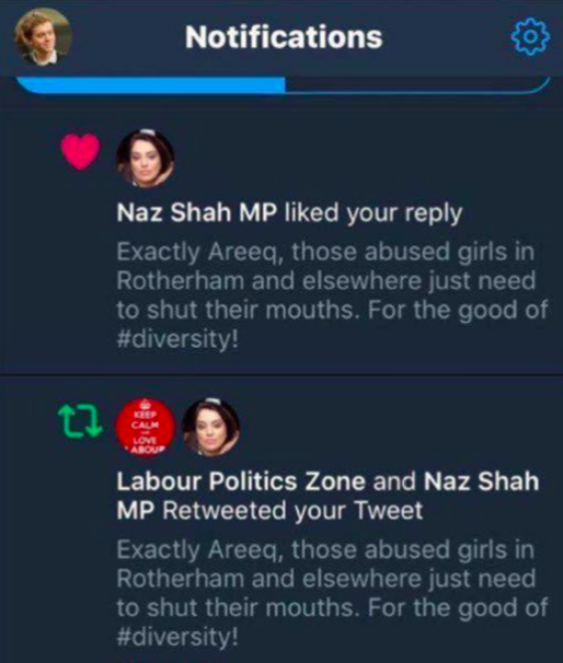 <em>Ms Shah liked and retweeted the comments made by a parody account (Twitter)</em>