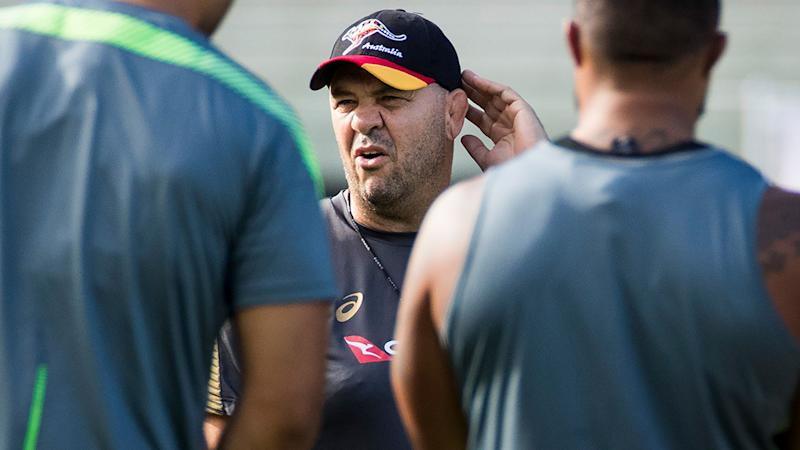 Michael Cheika, pictured here during a Wallabies training session.