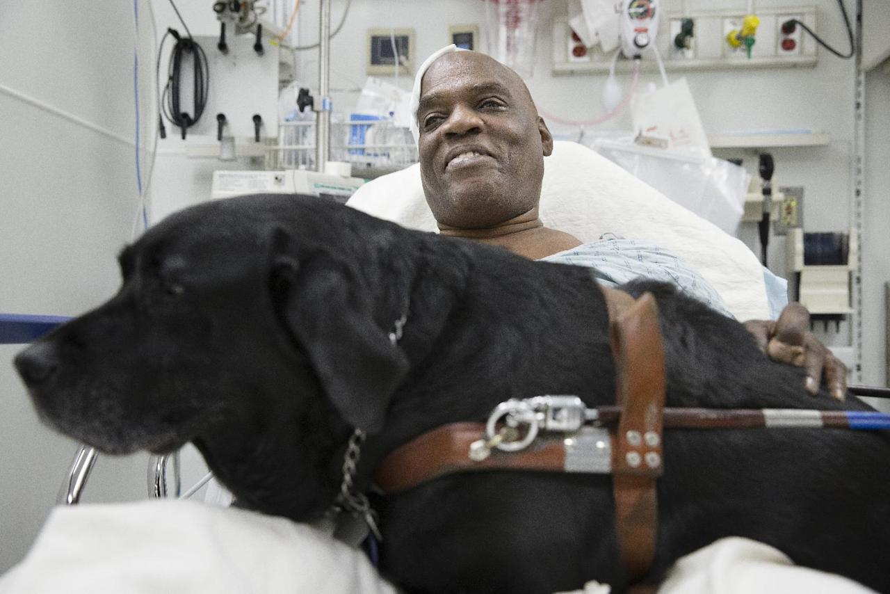 Cecil Williams smiles as he pets his guide dog Orlando in his hospital bed following a fall onto subway tracks from the platform at 145th Street, Tuesday, Dec. 17, 2013, in New York. The blind 61-year-old Williams says he fainted while holding onto his black labrador who tried to save him from falling. Both escaped without serious injury. (AP Photo/John Minchillo)