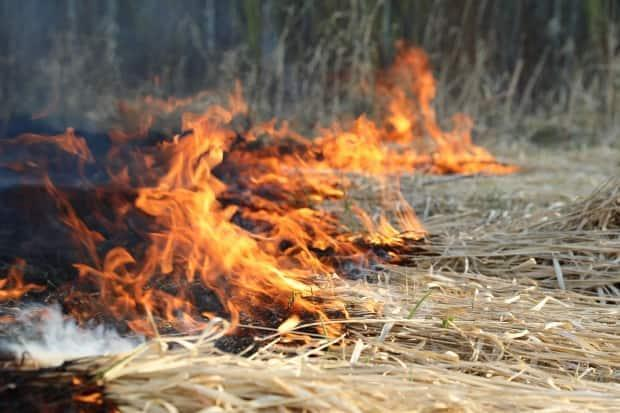 The wildfire was first reported at about 2:30 p.m. CST on Monday.