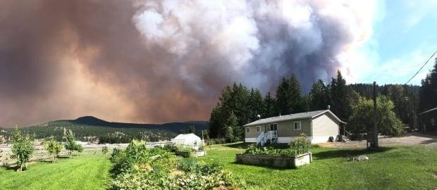 Monte Lake resident Stephanie Gamache took this picture of the White Rock Lake fire on Thursday. The fire is one of the largest of the close to 300 fires burning across B.C.  (Submitted by Steph Gamache - image credit)