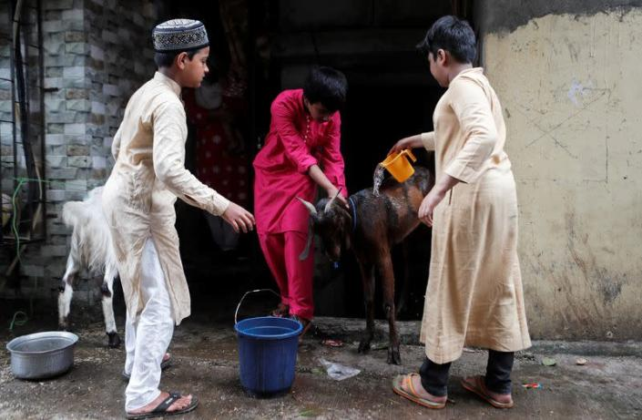 FILE PHOTO: Boys wash a goat before it is slaughtered during the Muslim holiday of Eid al-Adha, in Mumbai