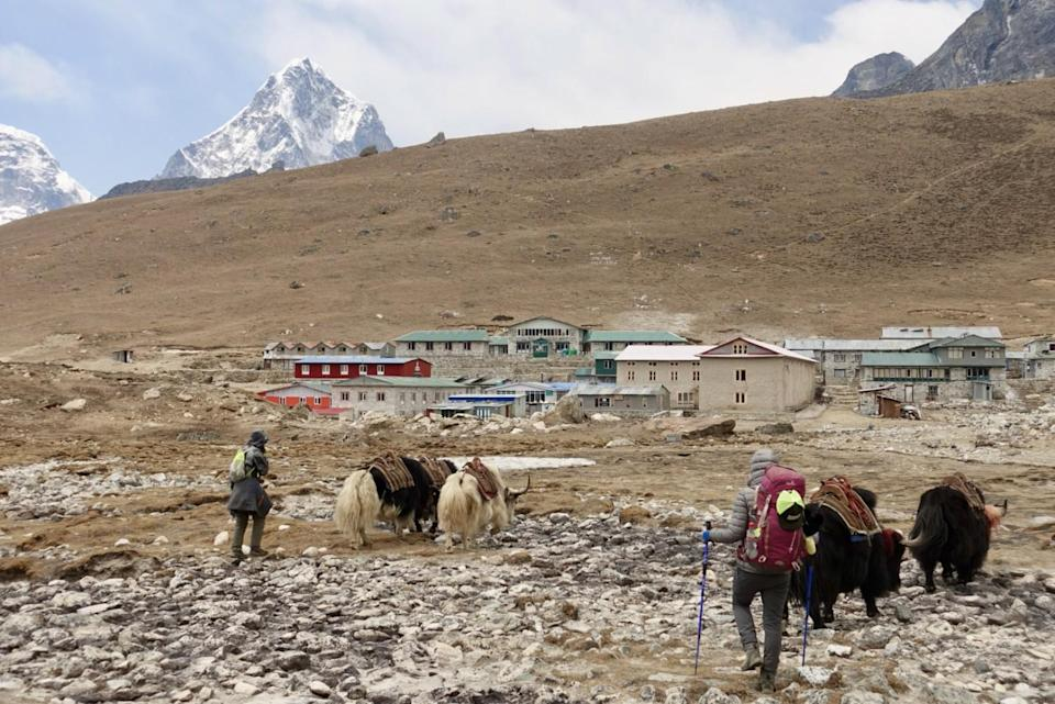 Two people with yaks near a small mountain village