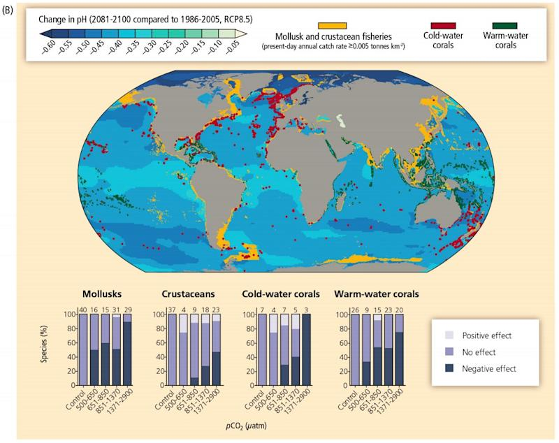 Change in ocean PH and effect on species number