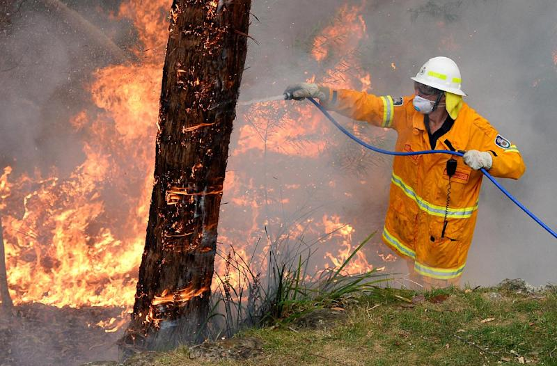 A firefighter attempts to contain wildfires in the Blue Mountains on October 22, 2013 during Australia's hottest year on record (AFP Photo/William West)