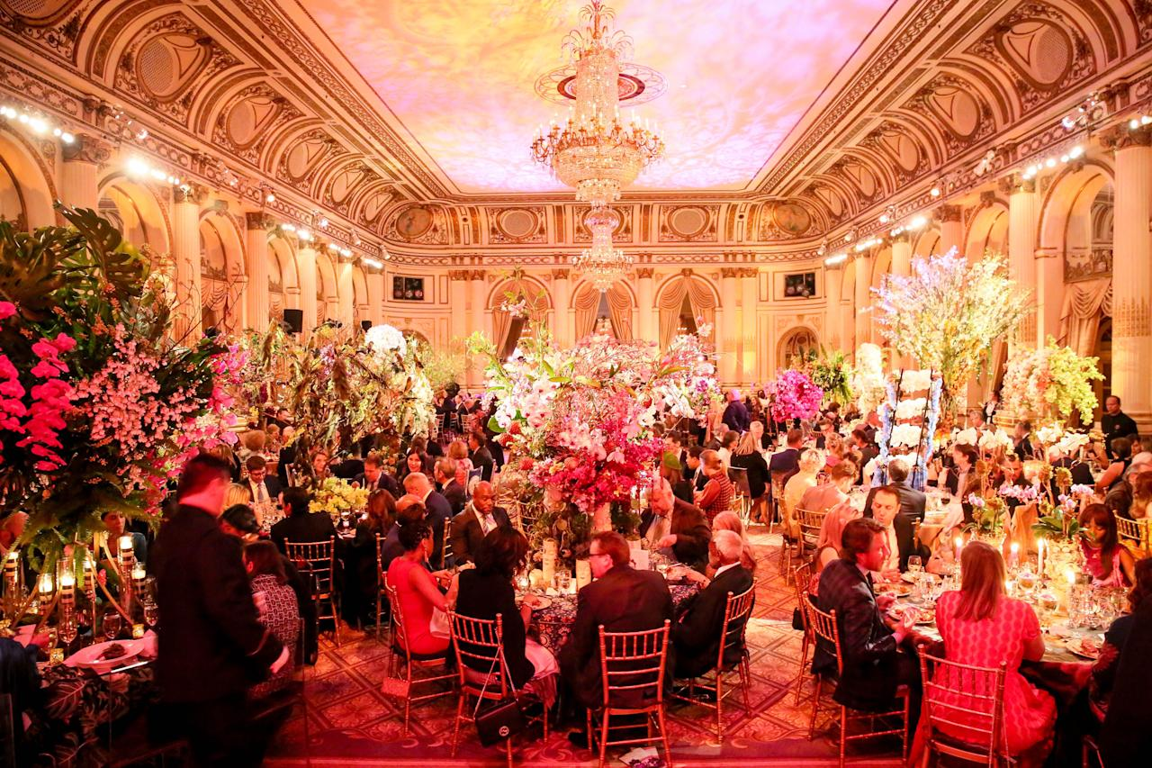 "<p><em>Orchid Dinner with New York Botanical Garden<br></em>February 19, 2020<br>The Plaza<br>New York, New York<em></em></p><p></p><p><em>Special Thanks to VERANDA's Partner: </em><a href=""https://www.nybg.org/"" target=""_blank"">New York Botanical Garden</a></p>"