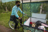 Teacher Gerardo Ixcoy pedals his adult tricycle converted into a mobile classroom past cornfields, in Santa Cruz del Quiche, Guatemala, Wednesday, July 15, 2020. When the novel coronavirus closed Guatemala's schools in mid-March, the 27-year-old invested his savings in the classroom-on-a-trike in order to give individual instruction to his sixth-grade students. (AP Photo/Moises Castillo)