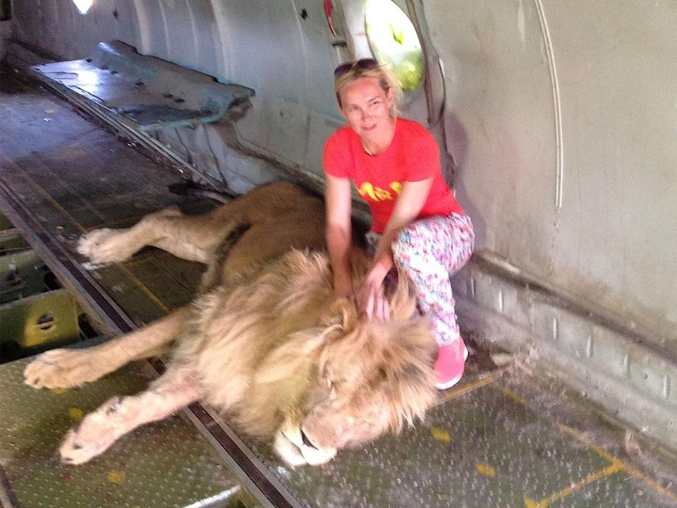Woman mauled by lion after entering enclosure to take photograph with animal