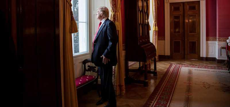 President Trump looking out a White House window.