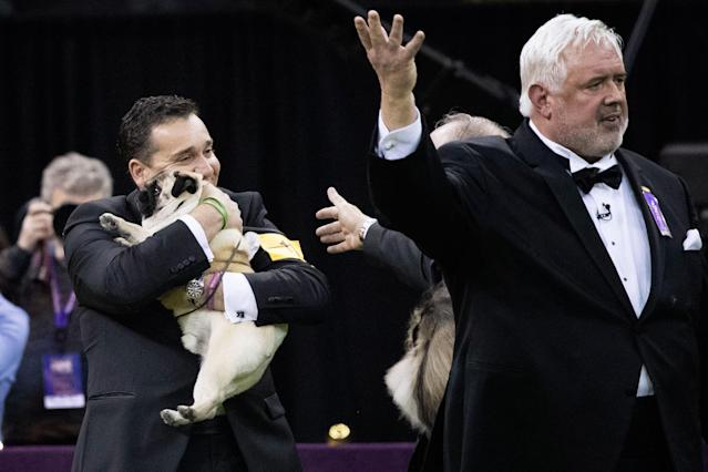 <p>Handler Esteban Farias hugs Biggie, a pug, after he won the Toy group competition during the 142nd Westminster Kennel Club Dog Show, Monday, Feb. 12, 2018, at Madison Square Garden in New York. Biggie won best in group. (Photo: Mary Altaffer/AP) </p>