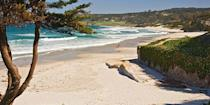 """<p>Crescent-shaped Carmel Beach in Carmel-by-the-Sea is one of California's <a href=""""https://www.bestproducts.com/fun-things-to-do/g2603/top-california-beach-vacations/"""" rel=""""nofollow noopener"""" target=""""_blank"""" data-ylk=""""slk:most beautiful beaches"""" class=""""link rapid-noclick-resp"""">most beautiful beaches</a>. Dogs are allowed off-leash, there's beach volleyball, and there are even wood-burning fire pits, where you can have cheese and wine as you settle in to watch the sunset. </p><p><a class=""""link rapid-noclick-resp"""" href=""""https://go.redirectingat.com?id=74968X1596630&url=https%3A%2F%2Fwww.tripadvisor.com%2FHotel_Review-g32172-d4079500-Reviews-Quail_Lodge_Golf_Club-Carmel_Monterey_County_California.html&sref=https%3A%2F%2Fwww.redbookmag.com%2Flife%2Fg34756735%2Fbest-beaches-for-vacations%2F"""" rel=""""nofollow noopener"""" target=""""_blank"""" data-ylk=""""slk:BOOK NOW"""">BOOK NOW</a> Quail Lodge & Golf Club</p><p><a class=""""link rapid-noclick-resp"""" href=""""https://go.redirectingat.com?id=74968X1596630&url=https%3A%2F%2Fwww.tripadvisor.com%2FHotel_Review-g32172-d124647-Reviews-L_Auberge_Carmel-Carmel_Monterey_County_California.html&sref=https%3A%2F%2Fwww.redbookmag.com%2Flife%2Fg34756735%2Fbest-beaches-for-vacations%2F"""" rel=""""nofollow noopener"""" target=""""_blank"""" data-ylk=""""slk:BOOK NOW"""">BOOK NOW</a> L'Auberge Carmel</p>"""