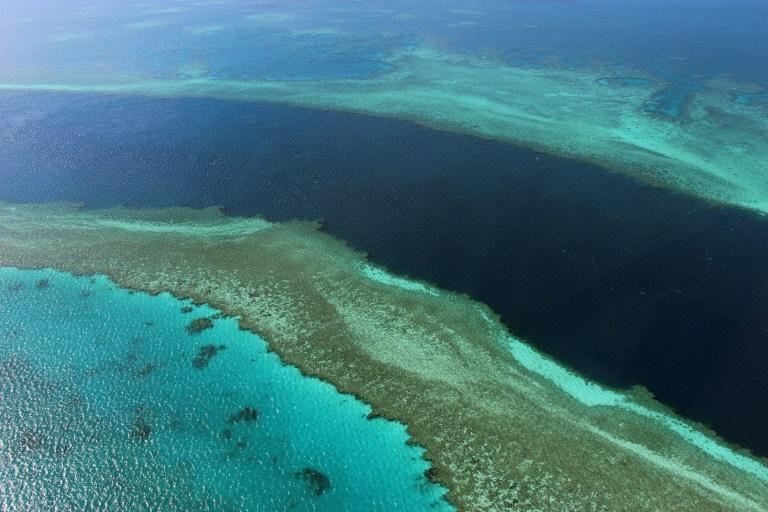 """There are fears that an """"in danger"""" listing could dent the massive global appeal of the reef -- the glittering jewel in Australia's tourism crown"""