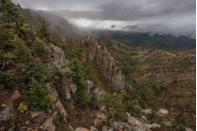 """<p>Arizona's own version of Bigfoot supposedly lives in the heavily wooded, rocky-scape known as Mogollon Rim. Alleged sightings of the cryptid, which is said to be 7-feet tall and covered in long black hair, <a href=""""https://www.onlyinyourstate.com/arizona/az-urban-legends/"""" rel=""""nofollow noopener"""" target=""""_blank"""" data-ylk=""""slk:date back"""" class=""""link rapid-noclick-resp"""">date back</a> to the early 1900s. </p>"""