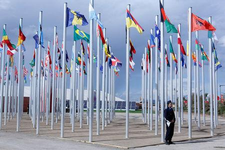 Flags from different countries are displayed at the World Climate Change Conference 2016 (COP22) in Marrakech, Morocco, November 6, 2016. REUTERS/Youssef Boudlal