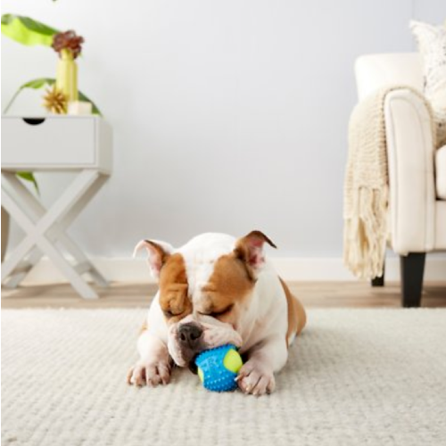 """Frisco 2.5"""" Tennis Ball with Rubber Sleeve. (Photo: Chewy)"""