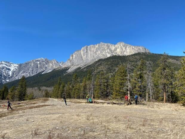 Mount Yamnuska trailhead, located near the M.D. of Bighorn in southern Alberta, will be closed as crews make some repairs and additions to the trails.    (Helen Pike/CBC - image credit)