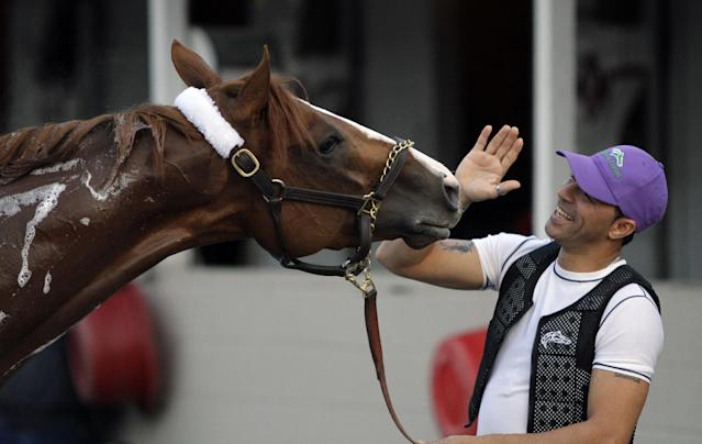 Exercise rider William Delgado plays with Kentucky Derby hopeful California Chrome after a morning workout at Churchill Downs Wednesday, April 30, 2014, in Louisville, Ky. (AP Photo/Garry Jones)