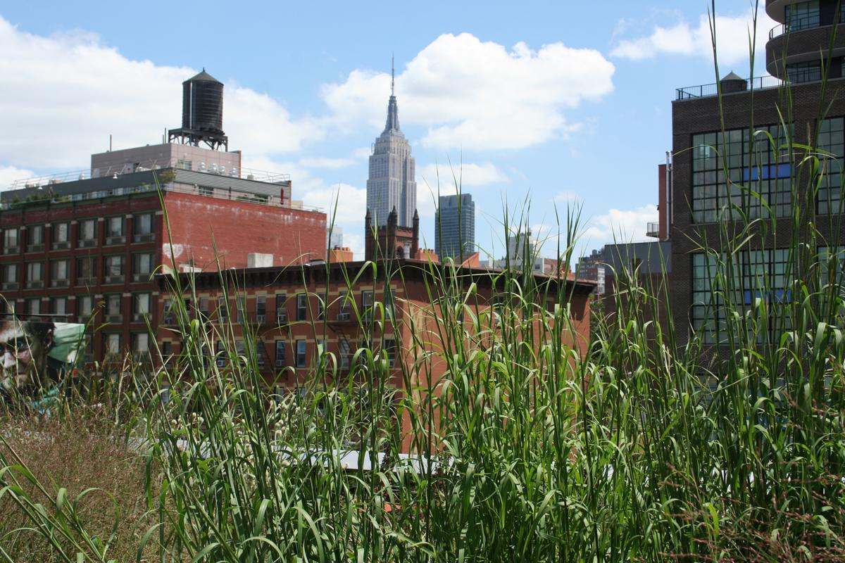 A view of downtown New York City from the High Line Park (Getty Images)