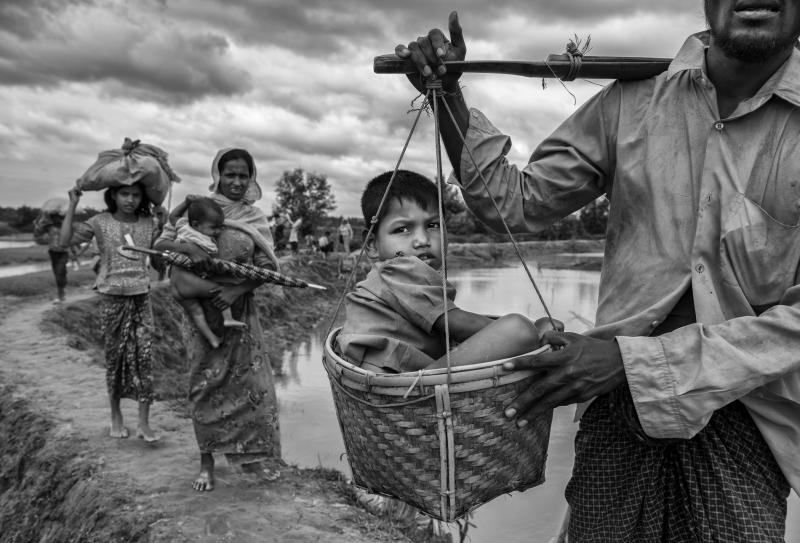 A Rohingya refugee boy is carried in a basket by a relative on Sept. 24 after crossing the border on the Bangladesh side of the Naf River while fleeing Myanmar.