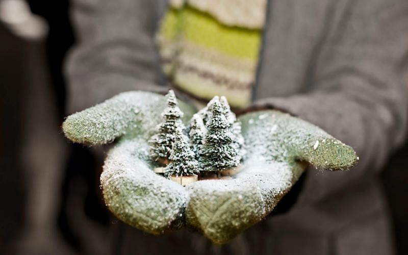 The perfect Christmas gifts for keen gardeners - Getty Images Contributor