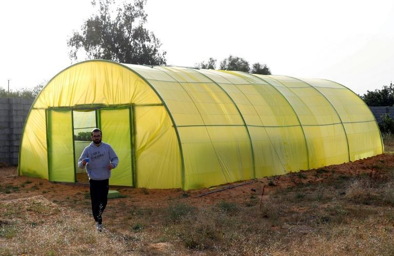 Bechiya and Mounir have worked tirelessly on their project for months, erecting a greenhouse surrounded by breeze-block walls on a semi-arid site