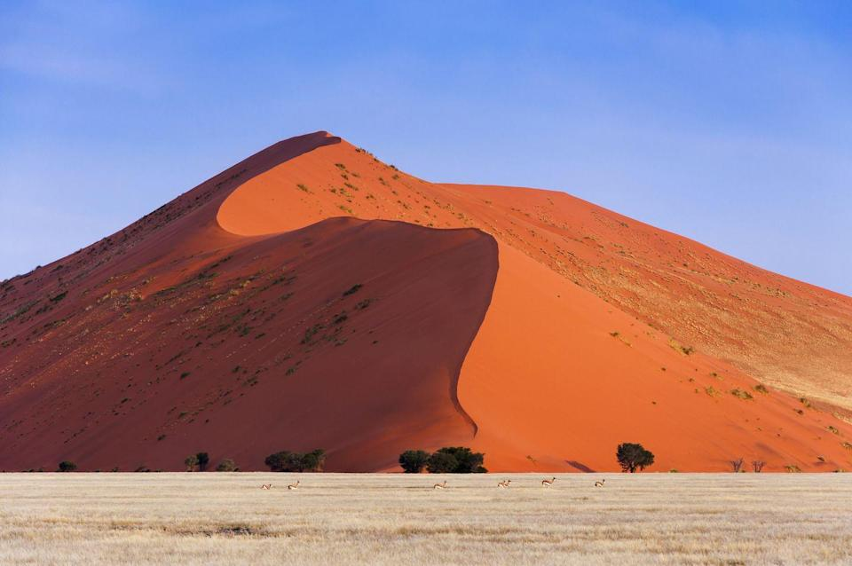 """<p>With amber sand dunes, endless golden grasslands, and emerald-blue lagoons, Namibia's vast natural beauty goes unmatched. The Namib desert (the world's oldest) spans more than 1,200 miles with striking dead-tree valleys at <a href=""""https://www.sossusvlei.org/"""" rel=""""nofollow noopener"""" target=""""_blank"""" data-ylk=""""slk:Sossusvlei"""" class=""""link rapid-noclick-resp"""">Sossusvlei</a> and sand dunes leading to Sandwich Harbour. An abundance of wildlife thrives within the savannas and Caprivi Strip wetlands of Nambia. On the Khomas Hochland plateau, the Zannier Reserve by N/a'an ku sê serves as a natural habitat for hundreds of injured animals and welcomes for guests to learn about conservation while staying at the reserve's lodge, <a href=""""https://www.zannierhotels.com/omaanda/"""" rel=""""nofollow noopener"""" target=""""_blank"""" data-ylk=""""slk:Omaanda"""" class=""""link rapid-noclick-resp"""">Omaanda</a>.</p>"""
