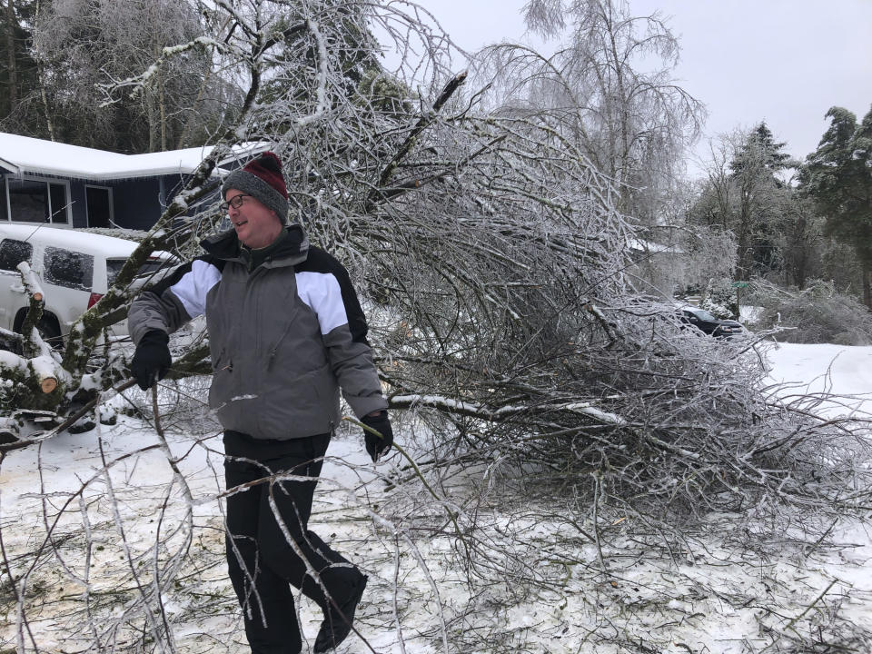 People walk by a collapsed tree in Lake Oswego, Ore., Saturday, Feb. 13, 2021. The tree fell during an ice and snowstorm that left hundreds of thousands of people without power and disrupted travel across the Pacific Northwest region. (AP Photo/Gillian Flaccus)