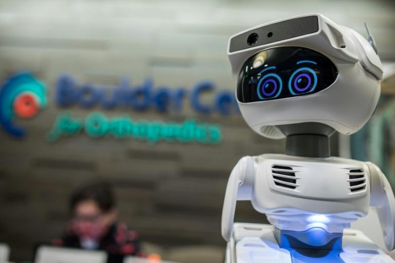 Robots which showed their value during the pandemic are taking the virtual stage at the online-only Consumer Electronics Show, including this programmable personal robot Misty