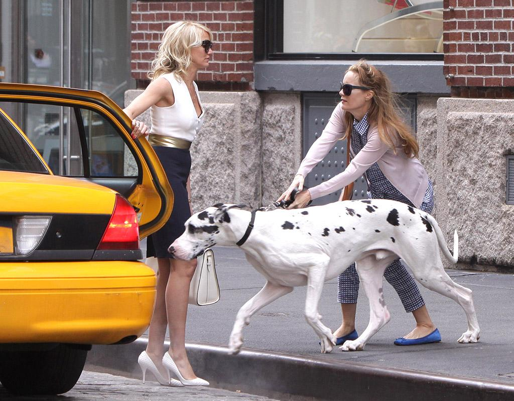 "Even in the Big Apple, that's an interesting scene! Cameron Diaz (left), Leslie Mann, and one very large canine shot a scene for the upcoming flick ""The Other Woman"" in Manhattan on Monday. (5/6/2013)"