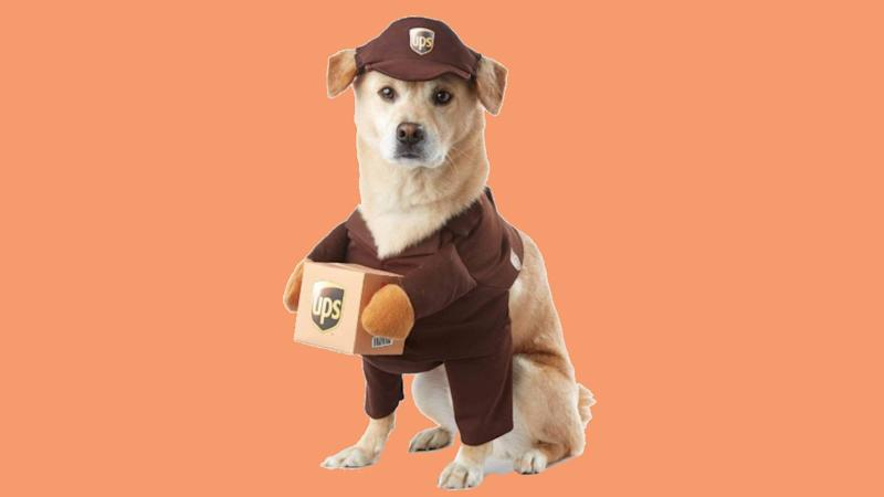 Man's best friend deserves a Halloween costume too! (Photo: Chewy)