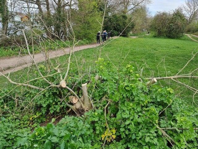Locals are angry about the damage.Elmbridge Council