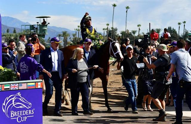 Jockey Joel Rosario rides Covfefe to victory in the Filly and Mare Sprint at the 2019 Breeders' Cup at the Santa Anita Racetrack in Arcadia, California, on November 2 (AFP Photo/Frederic J. BROWN)
