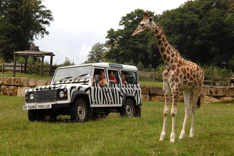 Safari: An exclusive two-day visit for a family of four to Longleat, set in the beautiful countryside of Wiltshire