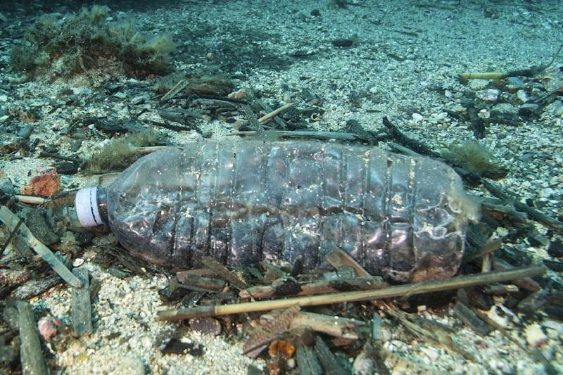 Plastic pollution is killing our marine life