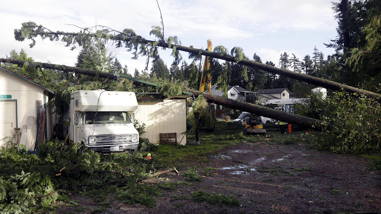 Trees that fell on outbuildings and a trailer when a tornado passed through the area earlier in the day are shown Monday, Sept. 30, 2013 in the Frederickson neighborhood near Puyallup, Wash. Several dozen homes were damaged in the storm. (AP Photo/Ted S. Warren)