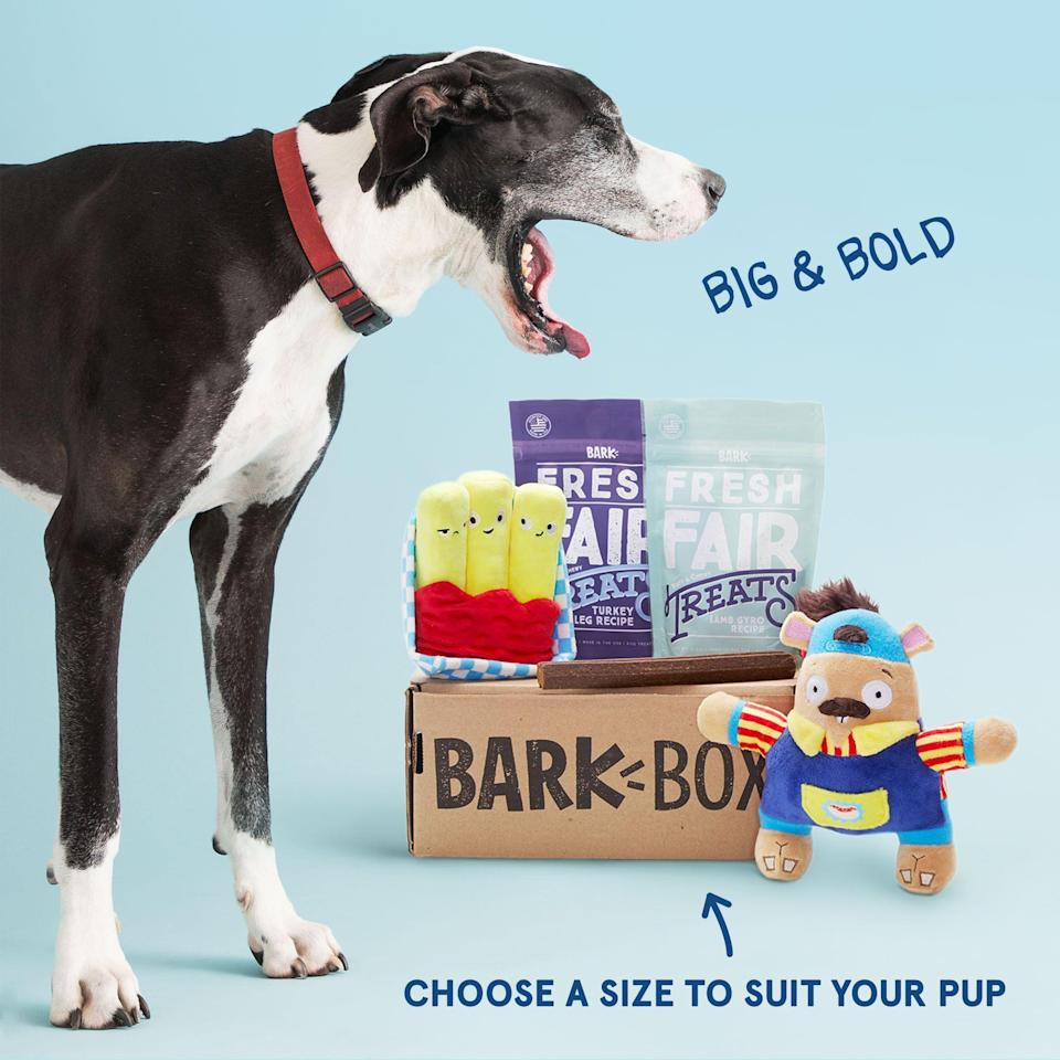 """<p><strong>BarkBox</strong></p><p>barkbox.com</p><p><a href=""""https://go.redirectingat.com?id=74968X1596630&url=https%3A%2F%2Fwww.barkbox.com%2Fsubscribe%2Fname&sref=https%3A%2F%2Fwww.marieclaire.com%2Fhome%2Fg24851290%2Fbest-dog-gifts%2F"""" rel=""""nofollow noopener"""" target=""""_blank"""" data-ylk=""""slk:SHOP IT"""" class=""""link rapid-noclick-resp"""">SHOP IT</a></p><p>I held out a long time before I subscribed to BarkBox. There were bills to pay, budgets to stick to—did I really <em>need </em>a subscription to this dog products box? Yes. Yes, I did, I eventually determined. Because it's not <em>about </em>me. My dog is obsessed with this monthly themed box of goodies, which contain toys and treats galore. Who was I to say no? (Also, they start at $22/month!)</p>"""