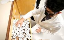 Brazilian forestry student Sanquetta separates material collected in the Amazon at the Center of Excellence in Research on Carbon Fixation in Biomass in Curitiba