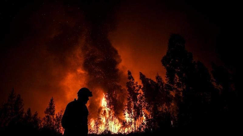 Firefighters battle massive wildfires in Portugal